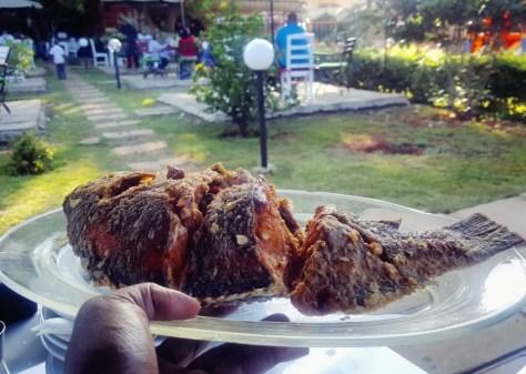 Perfectly fried fish, Mama Ashanti, Kenya