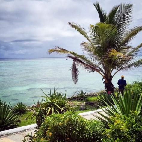 Palm tree and Ocean, Kasha Boutique Hotel, Zanzibar