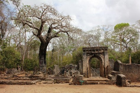 Tailor-Made Watamu Trips can include visits to gedi ruins