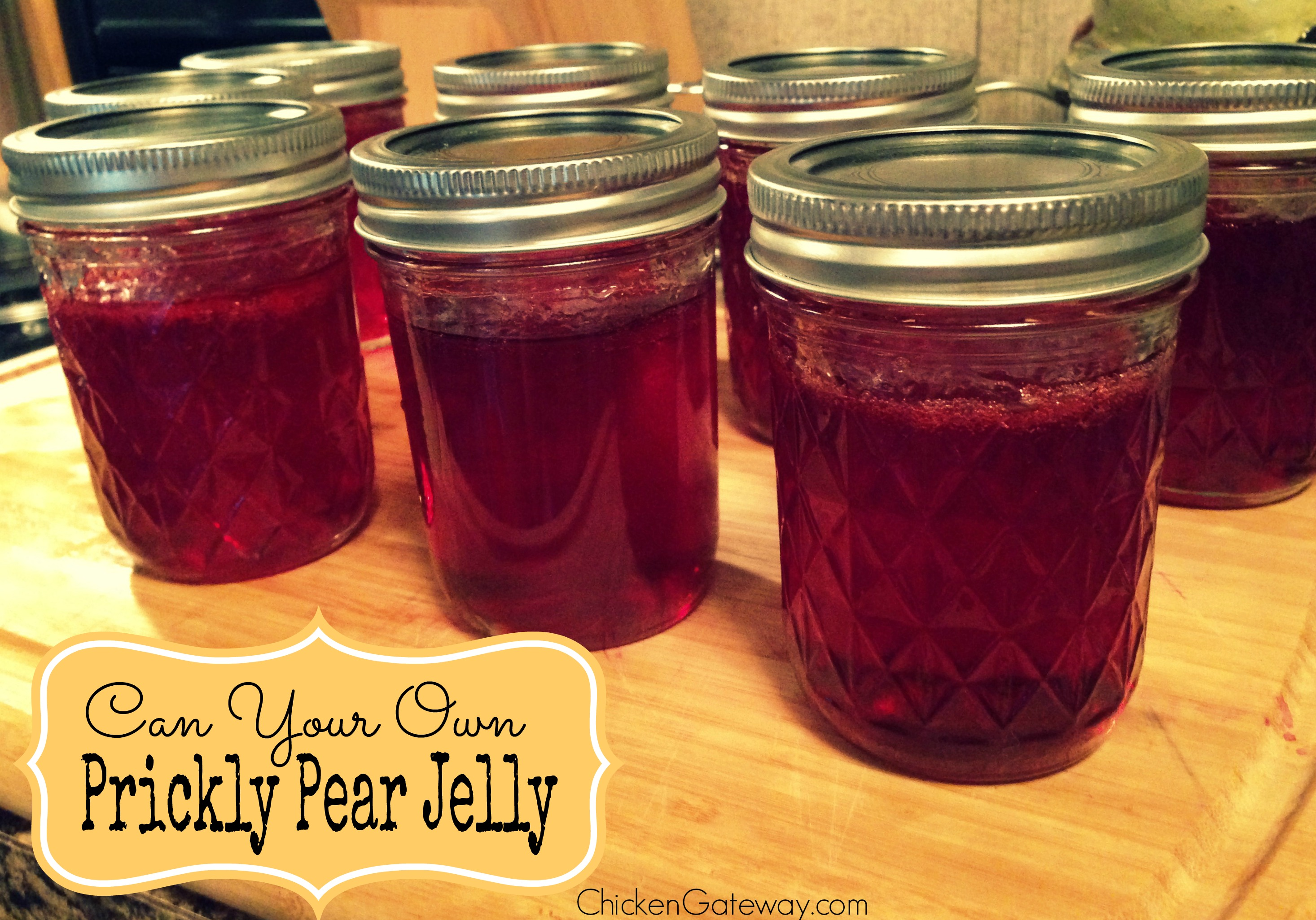 Image result for prickly pear jelly