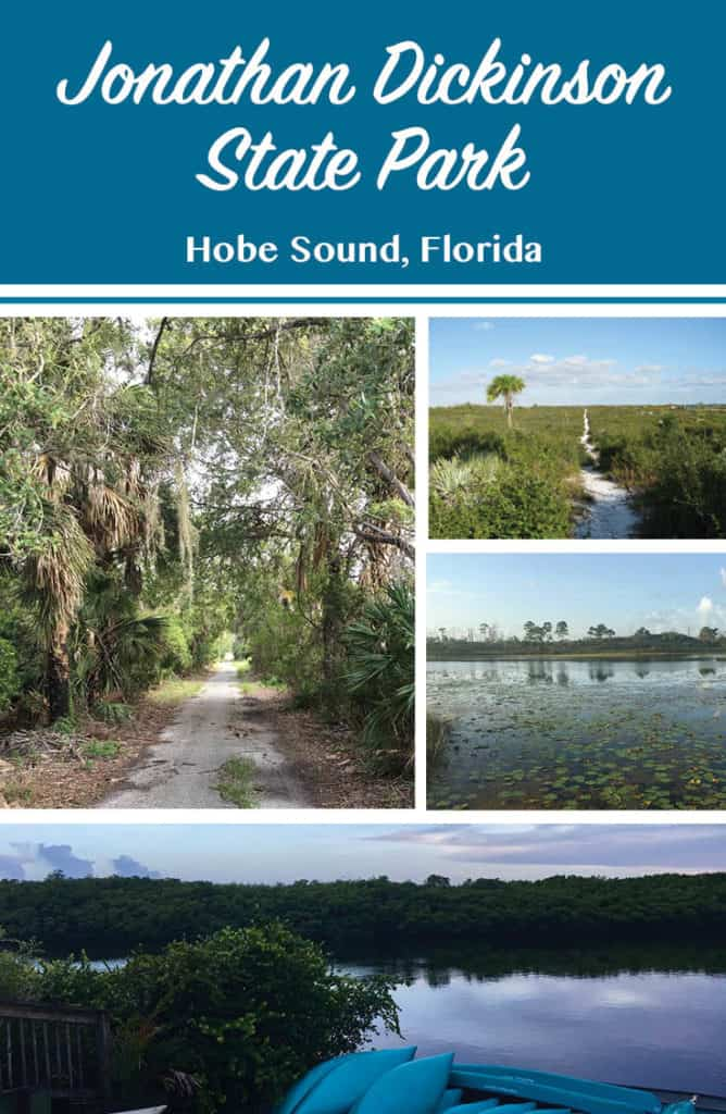 Jonathan Dickinson State Park Collage