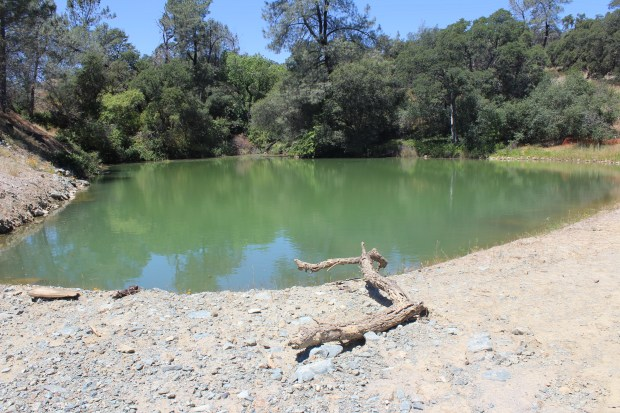 A pond adjacent to the Diversion Pool that had partly filled in to allow unloading the barges that were clearing out debris that had washed down the Oroville Dam spillways, appears to ahve been opened back up.