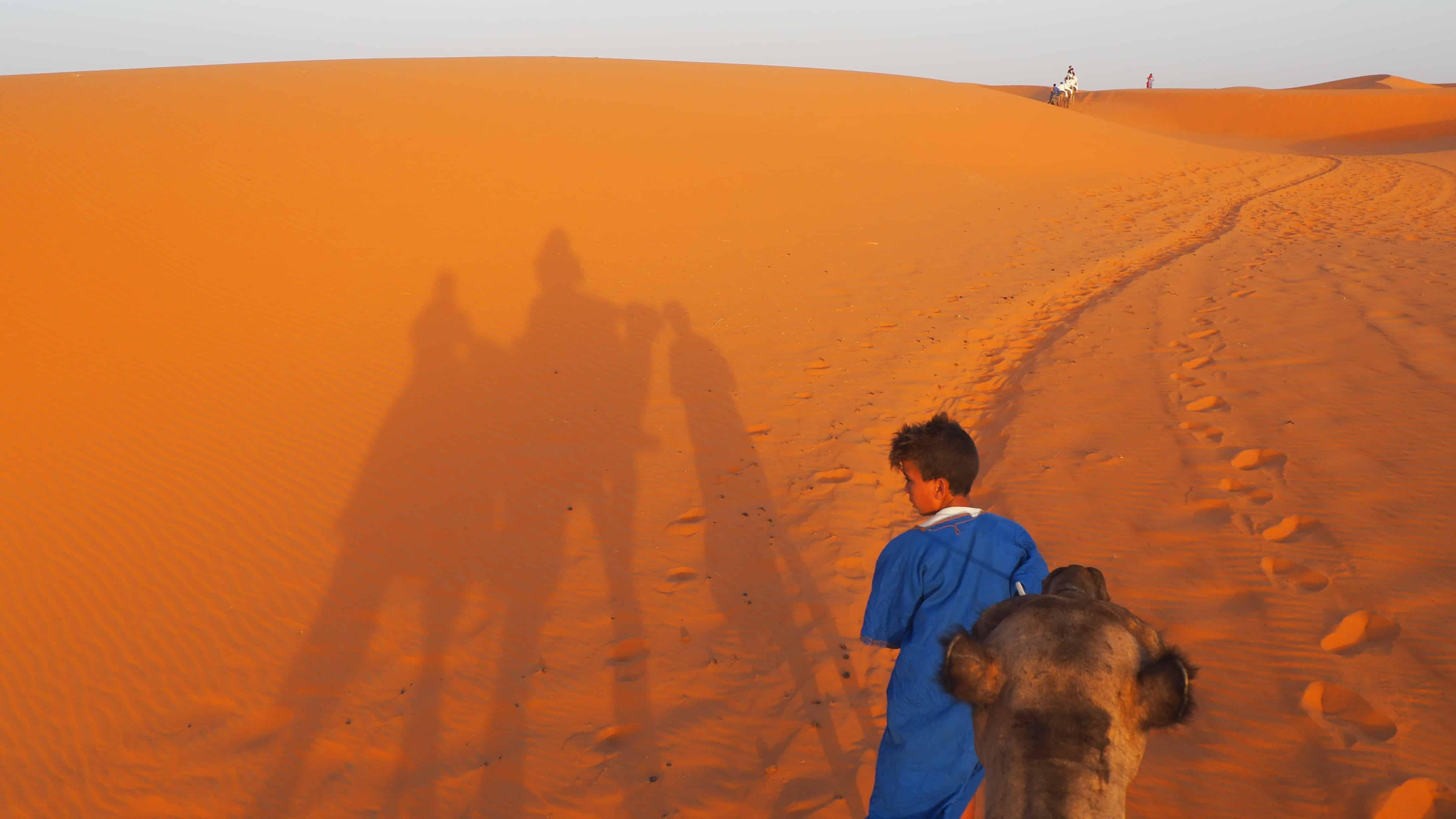 Sahara Desert Camel Riding