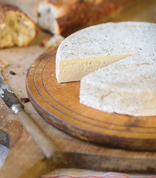 Black and White Truffled Brie from One-Hour Dairy-Free Cheese by Claudia Lucero