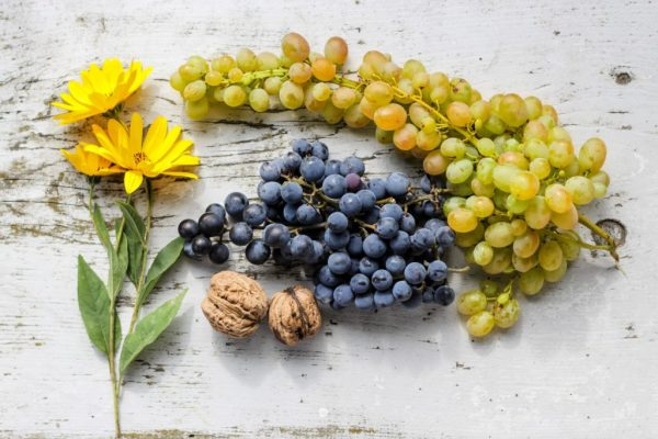 Grapes for brain health