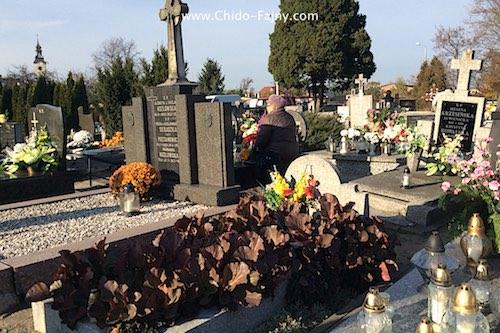 graves-polish