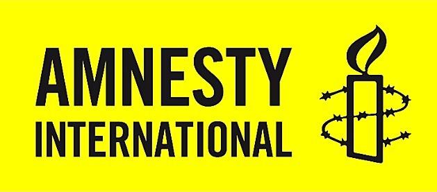 Amnesty decries absence of probe into Nigeria's murder cases