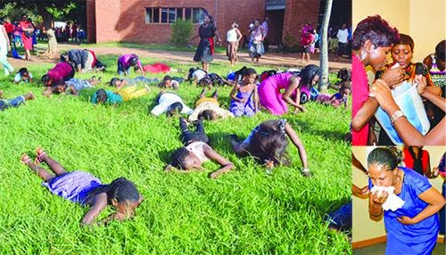 Grass salvation: South African preacher orders followers to eat grass