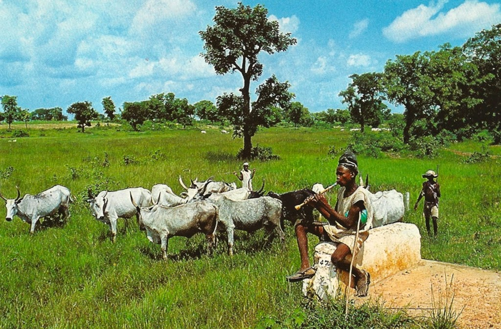 Fulani herdsmen and their host communities: A stitch in time saves nine