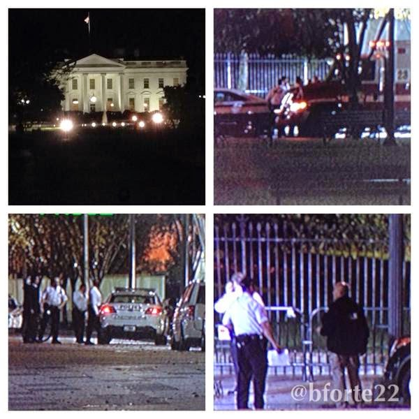 Dominic Adesanya, 23, in custody after jumping White House fence