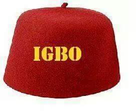 The Igbo Question: Chidi Odinkalu's attempt at political demolition