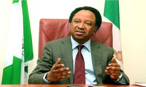 Senator Shehu Sani's home truth about Nigeria's foreign missions