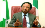 Senator Shehu Sani's home truth about Nigeria's foreign missions