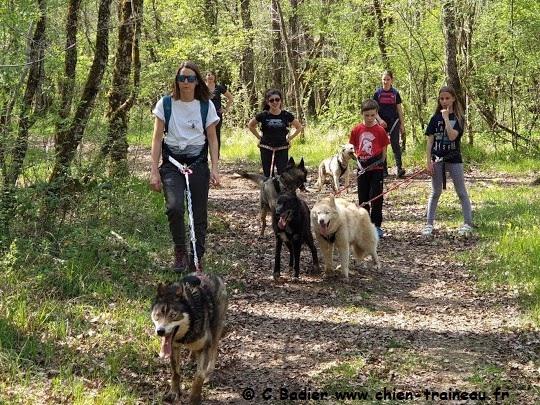 Infos Ecole canirando Charente et Covid 19
