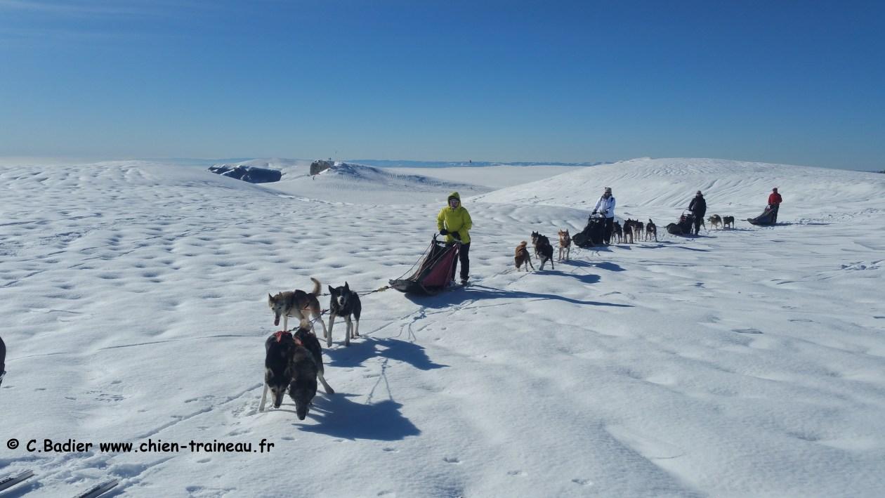 Randonnée en traîneau à chiens dans les Alpes