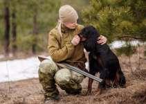 Comment habituer un chien au coup de fusil