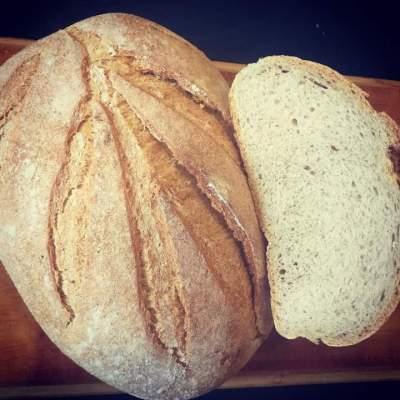 News / Il pane della Filiera di Stupinigi