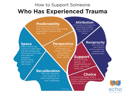 Link – How to Support Someone Who Has Experienced Trauma