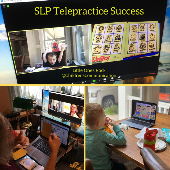 Speech-Language Pathology Telepractice Services