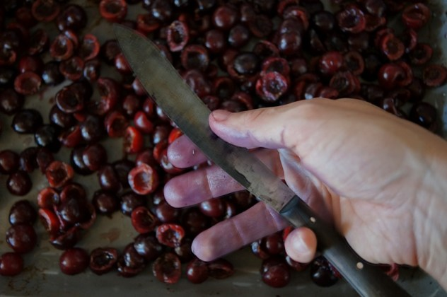 Kirschenblut