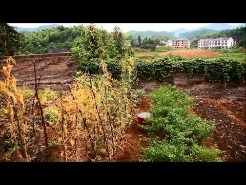 Chilli in Hunan 2: Das 'Schulfeld'