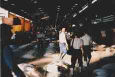Tsukiji12