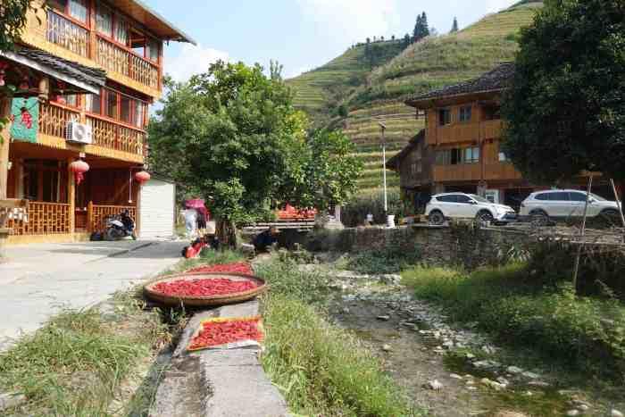 Longji Rice Terraces Chilli, Drying