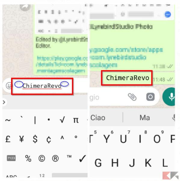FixedSys su WhatsApp