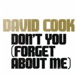 David Cook Don't You (Forget About Me)