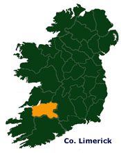 Chimney Ireland - Co. Limerick Offices - Chimney and roof repair contractors based in Limerick, Kerry and Clare