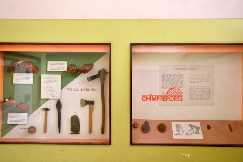Some of the ancient tools on display in the museum
