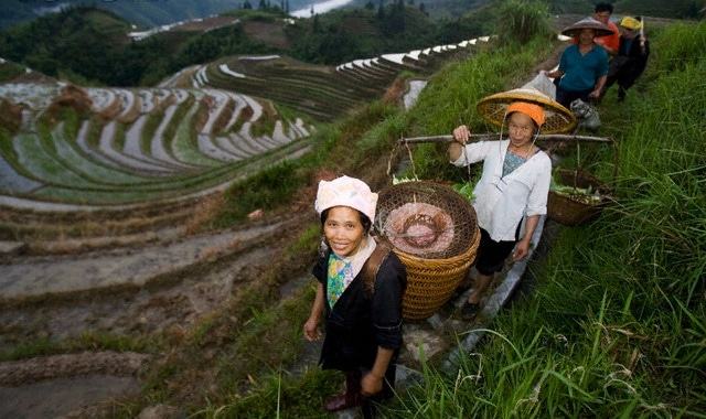 china ethnic minorities zhuang longshen terraces  Facts about China: RICH, POOR & INEQUALITY