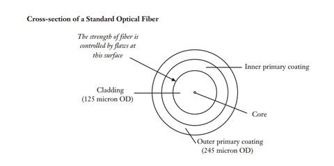 standard opticla fiber