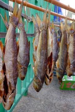 Trockenfisch...yummie!