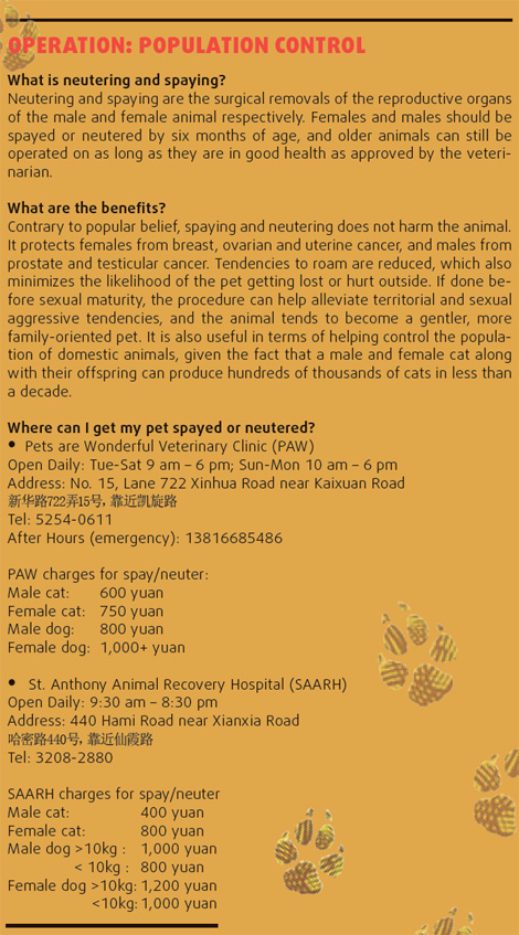 Spaying & Neutering