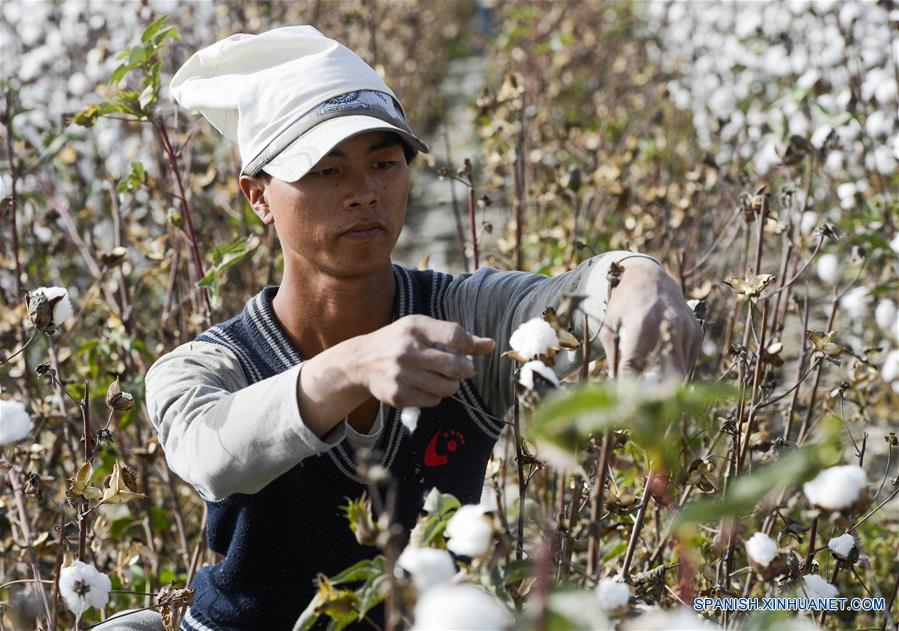ENFOQUE: Desarrollo industrial beneficia a gente pobre en oeste de China