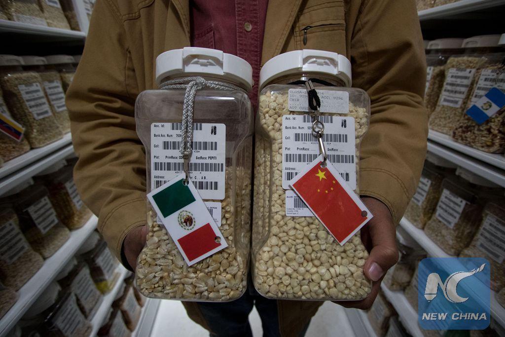 ESPECIAL: Pequeños productores agrícolas mexicanos buscan abrir mercado en China