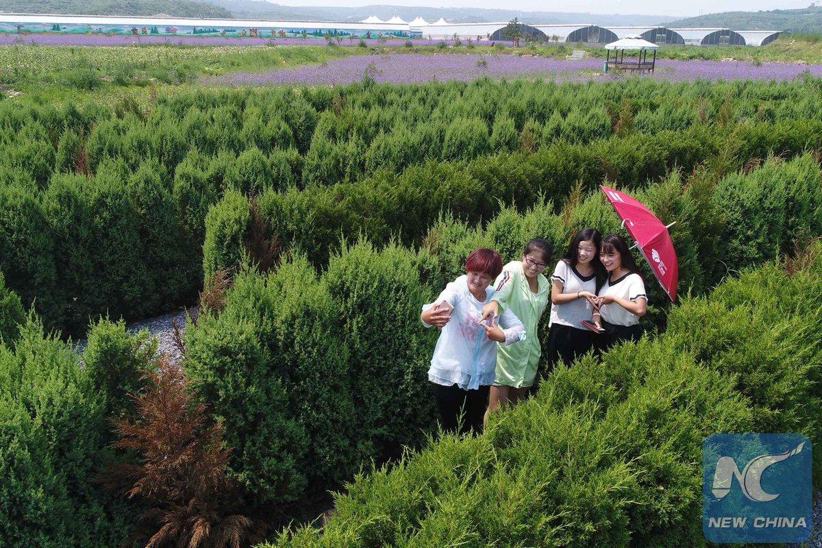 Enfoque de China: Campesinos siguen regresando a su tierra para dedicarse al turismo rural