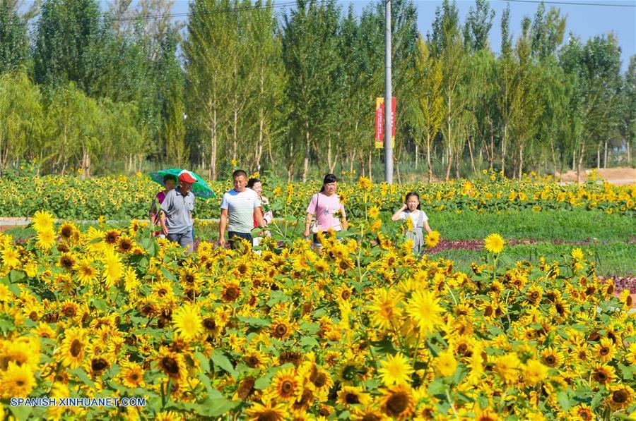 Turistas chinos exploran turismo rural
