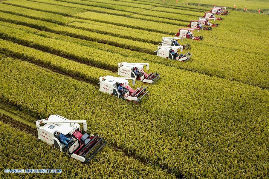 Economía china crece 6.6 por ciento en 2018