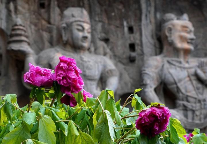Reabren sitio patrimonial chino de Longmen tras cierre de un mes a causa de la epidemia