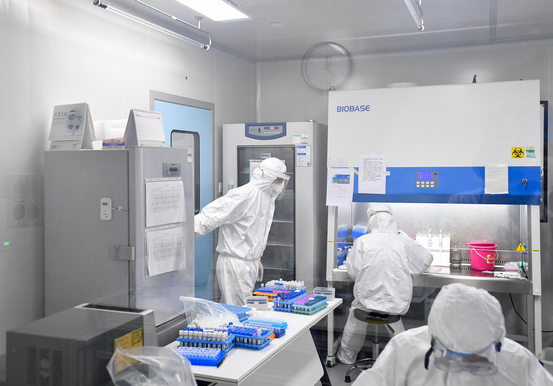 Resultados de ensayos de terapias contra COVID-19 se esperan en tres semanas, dice OMS