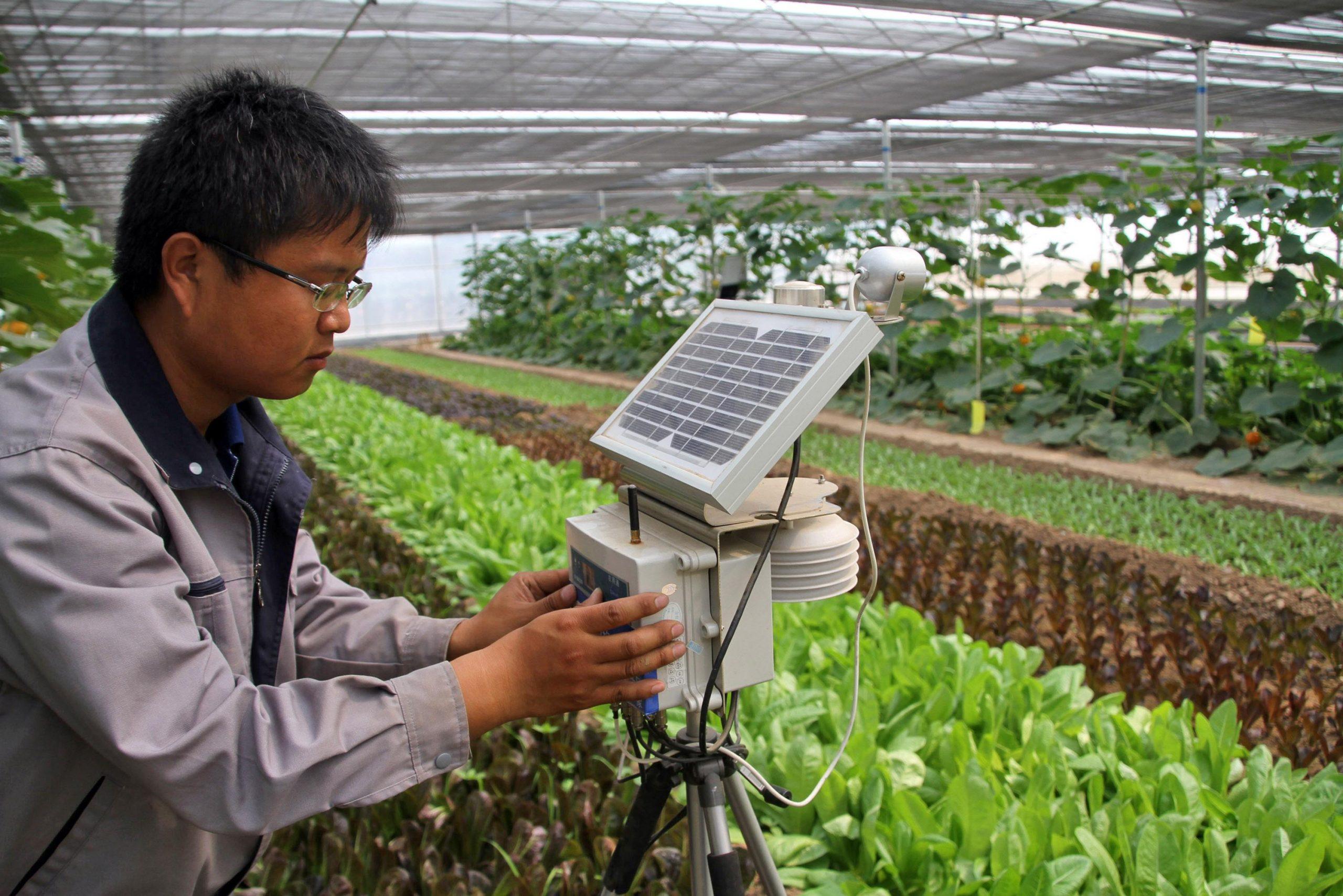 Provincia noroccidental de China celebrará feria de alta tecnología agrícola