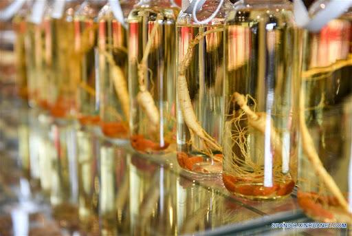Entra en operación parque industrial de medicina herbal en noreste de China