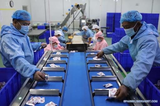 China fortalece innovación científica y tecnológica en ganadería y avicultura