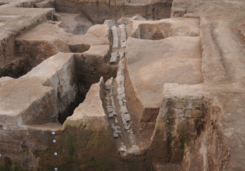 Provincia de Henan encabeza lista de 10 descubrimientos arqueológicos más importantes de China en 2020