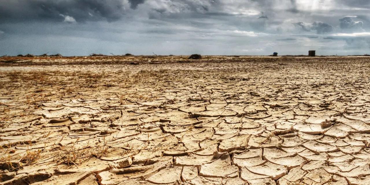 72 millions débloqués pour l'aide aux victimes de la sécheresse