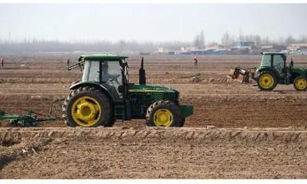 Les prix des produits agricoles continuent leur baisse