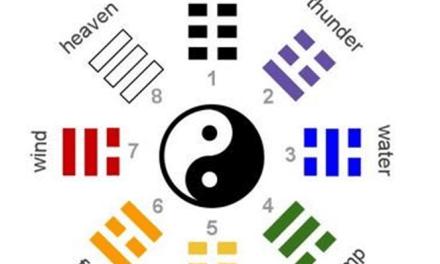 Le Professeur Liu Yunsheng évoque la calligraphie