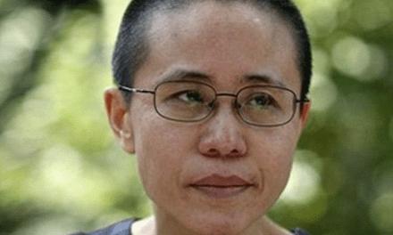 Liu Xia réapparaît